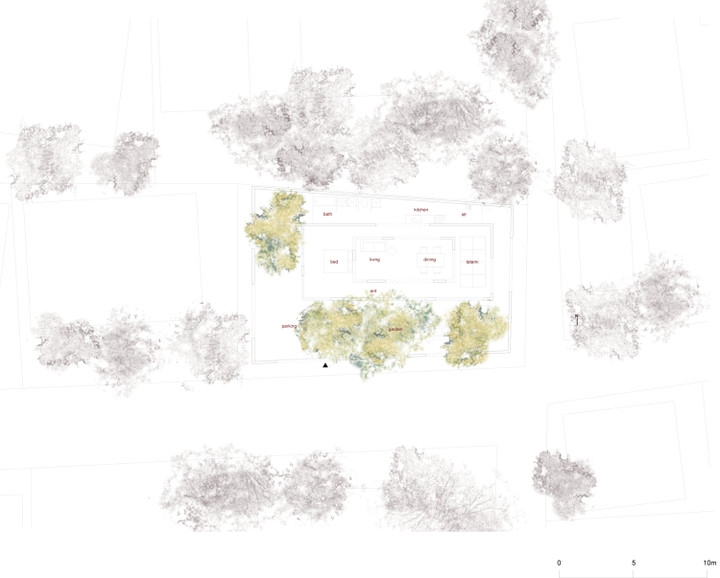psb (19).jpg
