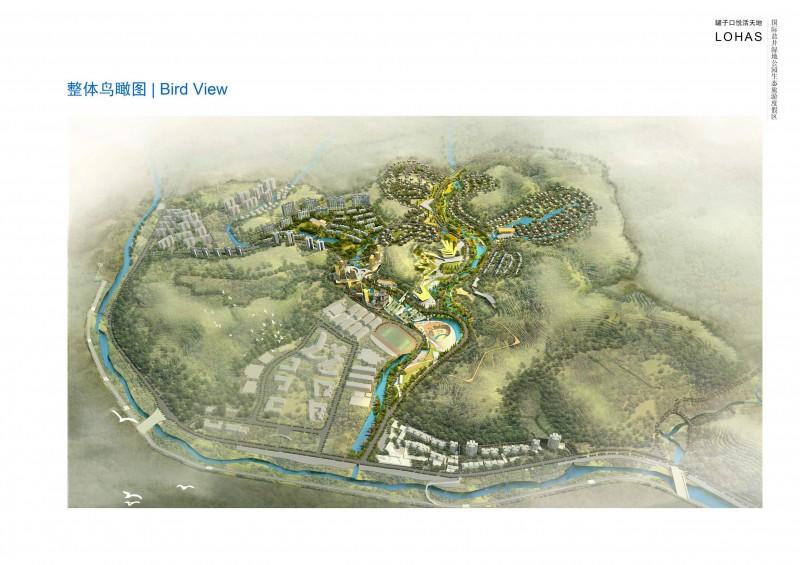 中华养生谷国际盐井湿地公园生态旅游度假区概念规划_页面_11.jpg