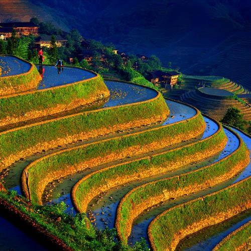 rural-china.jpg