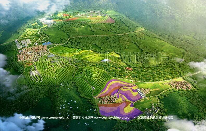 美丽乡村规划.jpg