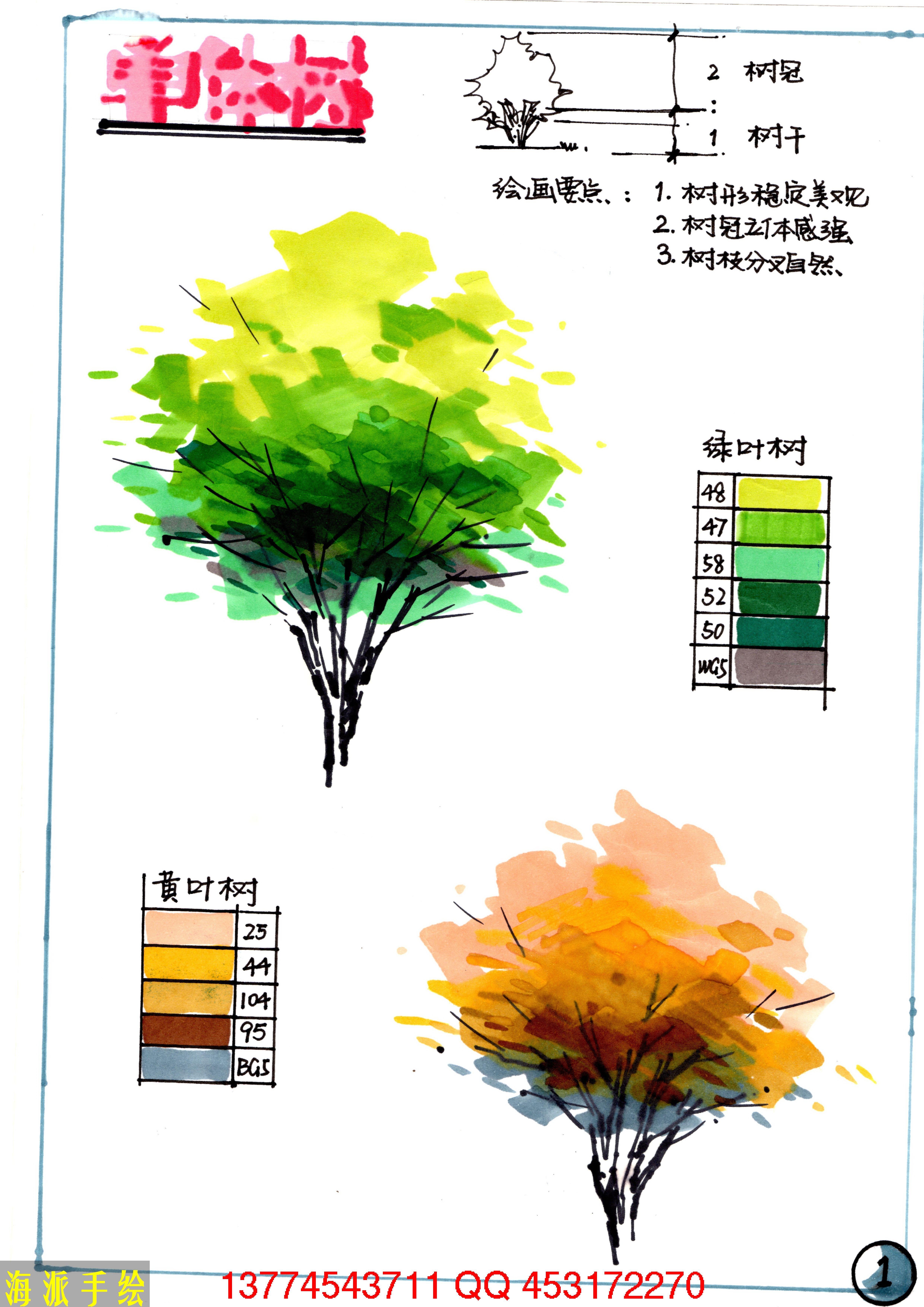 手绘马克笔画树教程的几张图片