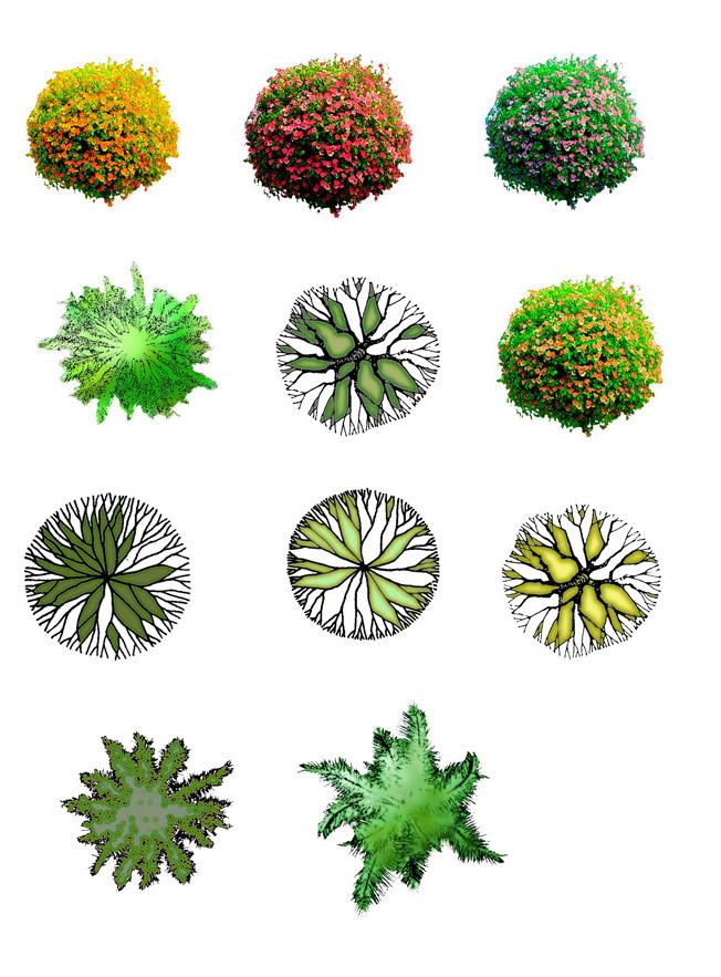 平面树素材,树种比较全的