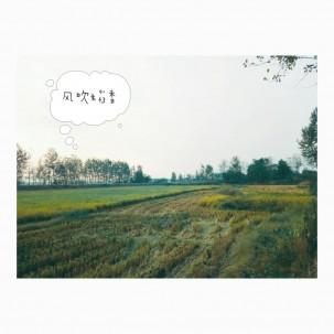 这个季节的乡村美得很[闪烁]