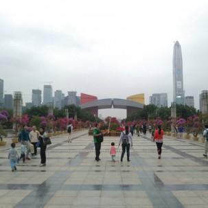 从莲花山公园望过去的深圳市民中心