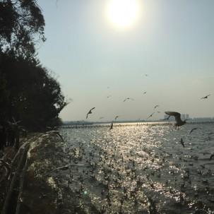 昆明海埂公园