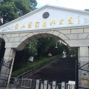 佘山不愧是大上海的后花园,绿化率很高,环境的确很好