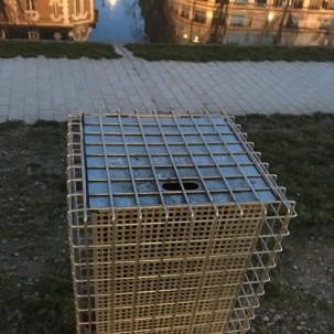 一只隐藏的垃圾桶(地标:法国雷恩)