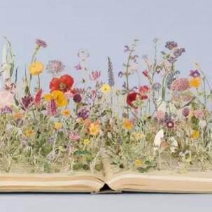 被人遗弃的旧书却被她剪成了童话世界