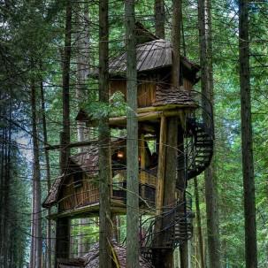 世界上那些美丽的树屋