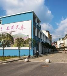 重庆市涪陵区大木街景