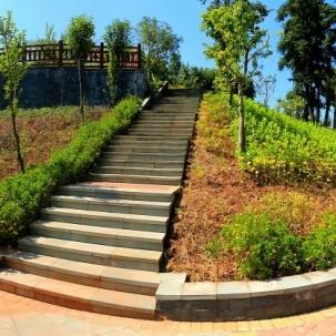 涪陵坪上特色农业区建成第一个休闲公园