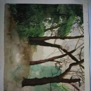 很久之前的一张水彩画